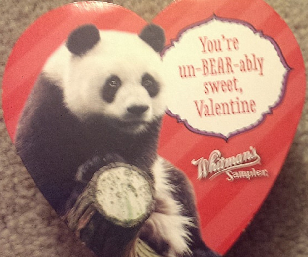 Heart Shaped Panda Bear Box of Chocolates